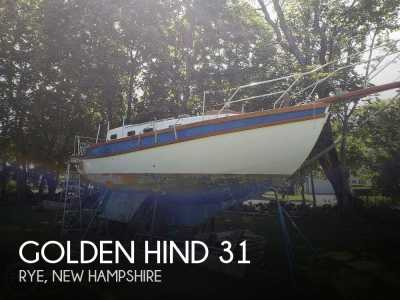 1977 Golden Hind 31 Sail Cutter